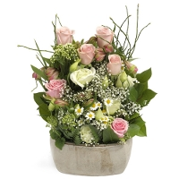 Rozen arrangement